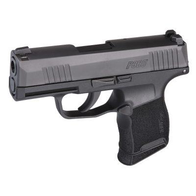 How To Buy a Gun in Virginia VA